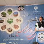 اولین جشنواره باجه های بانکی روستایی در روستای روئین برگزار شد